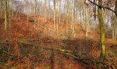 Trail Walk SAINT-JEAN-AUX-BOIS - en forêt de Compiègne_11_la landeblin_les Petits Monts - Photo 72
