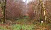 Trail Walk SAINT-JEAN-AUX-BOIS - en forêt de Compiègne_11_la landeblin_les Petits Monts - Photo 20