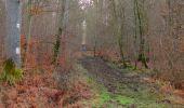 Trail Walk SAINT-JEAN-AUX-BOIS - en forêt de Compiègne_11_la landeblin_les Petits Monts - Photo 84