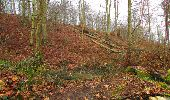 Trail Walk SAINT-JEAN-AUX-BOIS - en forêt de Compiègne_11_la landeblin_les Petits Monts - Photo 66