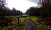 Trail Walk SAINT-JEAN-AUX-BOIS - en forêt de Compiègne_11_la landeblin_les Petits Monts - Photo 22