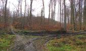 Randonnée Marche SAINT-JEAN-AUX-BOIS - en forêt de Compiègne_11_la landeblin_les Petits Monts - Photo 83