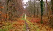 Trail Walk SAINT-JEAN-AUX-BOIS - en forêt de Compiègne_11_la landeblin_les Petits Monts - Photo 24