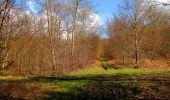 Trail Walk SAINT-JEAN-AUX-BOIS - en forêt de Compiègne_11_la landeblin_les Petits Monts - Photo 92
