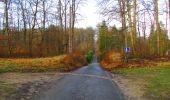 Trail Walk SAINT-JEAN-AUX-BOIS - en forêt de Compiègne_11_la landeblin_les Petits Monts - Photo 2