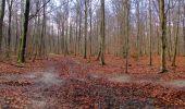 Trail Walk SAINT-JEAN-AUX-BOIS - en forêt de Compiègne_11_la landeblin_les Petits Monts - Photo 64