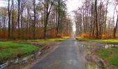 Trail Walk SAINT-JEAN-AUX-BOIS - en forêt de Compiègne_11_la landeblin_les Petits Monts - Photo 8