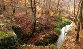 Randonnée Marche SAINT-JEAN-AUX-BOIS - en forêt de Compiègne_11_la landeblin_les Petits Monts - Photo 10