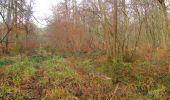 Trail Walk SAINT-JEAN-AUX-BOIS - en forêt de Compiègne_11_la landeblin_les Petits Monts - Photo 19