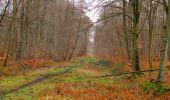 Trail Walk SAINT-JEAN-AUX-BOIS - en forêt de Compiègne_11_la landeblin_les Petits Monts - Photo 27