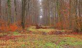 Trail Walk SAINT-JEAN-AUX-BOIS - en forêt de Compiègne_11_la landeblin_les Petits Monts - Photo 35