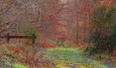 Randonnée Marche SAINT-JEAN-AUX-BOIS - en forêt de Compiègne_11_la landeblin_les Petits Monts - Photo 21