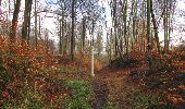Trail Walk SAINT-JEAN-AUX-BOIS - en forêt de Compiègne_11_la landeblin_les Petits Monts - Photo 70