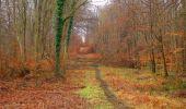Trail Walk SAINT-JEAN-AUX-BOIS - en forêt de Compiègne_11_la landeblin_les Petits Monts - Photo 25