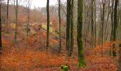 Trail Walk SAINT-JEAN-AUX-BOIS - en forêt de Compiègne_11_la landeblin_les Petits Monts - Photo 50
