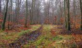 Trail Walk SAINT-JEAN-AUX-BOIS - en forêt de Compiègne_11_la landeblin_les Petits Monts - Photo 39