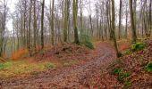 Trail Walk SAINT-JEAN-AUX-BOIS - en forêt de Compiègne_11_la landeblin_les Petits Monts - Photo 54