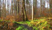 Trail Walk SAINT-JEAN-AUX-BOIS - en forêt de Compiègne_11_la landeblin_les Petits Monts - Photo 3