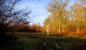 Trail Walk SAINT-JEAN-AUX-BOIS - en forêt de Compiègne_11_la landeblin_les Petits Monts - Photo 18
