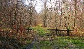 Trail Walk SAINT-JEAN-AUX-BOIS - en forêt de Compiègne_11_la landeblin_les Petits Monts - Photo 93