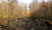Trail Walk SAINT-JEAN-AUX-BOIS - en forêt de Compiègne_11_la landeblin_les Petits Monts - Photo 90