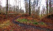 Trail Walk SAINT-JEAN-AUX-BOIS - en forêt de Compiègne_11_la landeblin_les Petits Monts - Photo 69