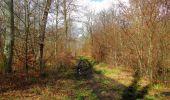 Randonnée Marche SAINT-JEAN-AUX-BOIS - en forêt de Compiègne_11_la landeblin_les Petits Monts - Photo 91