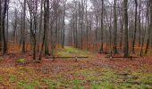 Trail Walk SAINT-JEAN-AUX-BOIS - en forêt de Compiègne_11_la landeblin_les Petits Monts - Photo 36