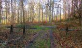 Trail Walk SAINT-JEAN-AUX-BOIS - en forêt de Compiègne_11_la landeblin_les Petits Monts - Photo 94