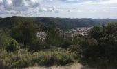 Randonnée Autre activité TARASCON - St Michel de Frigolet - Photo 1