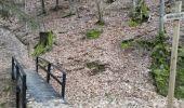 Trail Walk Saint-Hubert - MIRWART(St-Roch) - Photo 4