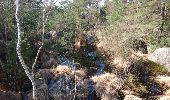 Trail Walk FONTAINEBLEAU - SVG 180321 - Photo 3