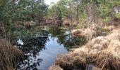 Trail Walk FONTAINEBLEAU - SVG 180321 - Photo 1