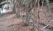 Trail Walk COMBLOUX - COMBLOUX (découverte) - Photo 2