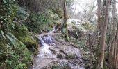 Randonnée Marche ROVON - Balade autour de Rovon - Photo 2