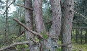 Trail Walk NEMOURS - 180327 EnCours - Photo 5