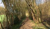 Trail Walk Profondeville - Balade de Lesve à Arbre - Photo 6