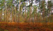 Randonnée Marche SAINT-JEAN-AUX-BOIS - en forêt de Compiègne_12_le Grand Octogone - Photo 15