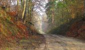 Randonnée Marche SAINT-JEAN-AUX-BOIS - en forêt de Compiègne_12_le Grand Octogone - Photo 31