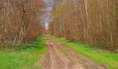 Randonnée Marche SAINT-JEAN-AUX-BOIS - en forêt de Compiègne_12_le Grand Octogone - Photo 90