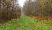 Randonnée Marche SAINT-JEAN-AUX-BOIS - en forêt de Compiègne_12_le Grand Octogone - Photo 4