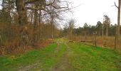 Randonnée Marche SAINT-JEAN-AUX-BOIS - en forêt de Compiègne_12_le Grand Octogone - Photo 125