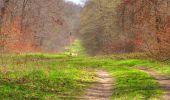 Randonnée Marche SAINT-JEAN-AUX-BOIS - en forêt de Compiègne_12_le Grand Octogone - Photo 83