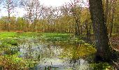 Randonnée Marche SAINT-JEAN-AUX-BOIS - en forêt de Compiègne_12_le Grand Octogone - Photo 70