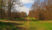 Randonnée Marche SAINT-JEAN-AUX-BOIS - en forêt de Compiègne_12_le Grand Octogone - Photo 98