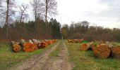 Randonnée Marche SAINT-JEAN-AUX-BOIS - en forêt de Compiègne_12_le Grand Octogone - Photo 111