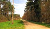 Randonnée Marche SAINT-JEAN-AUX-BOIS - en forêt de Compiègne_12_le Grand Octogone - Photo 101