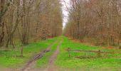Randonnée Marche SAINT-JEAN-AUX-BOIS - en forêt de Compiègne_12_le Grand Octogone - Photo 105