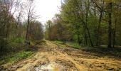 Randonnée Marche SAINT-JEAN-AUX-BOIS - en forêt de Compiègne_12_le Grand Octogone - Photo 63