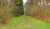 Randonnée Marche SAINT-JEAN-AUX-BOIS - en forêt de Compiègne_12_le Grand Octogone - Photo 127